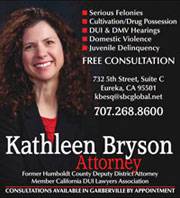 Kathleen Bryson Attorney at Law